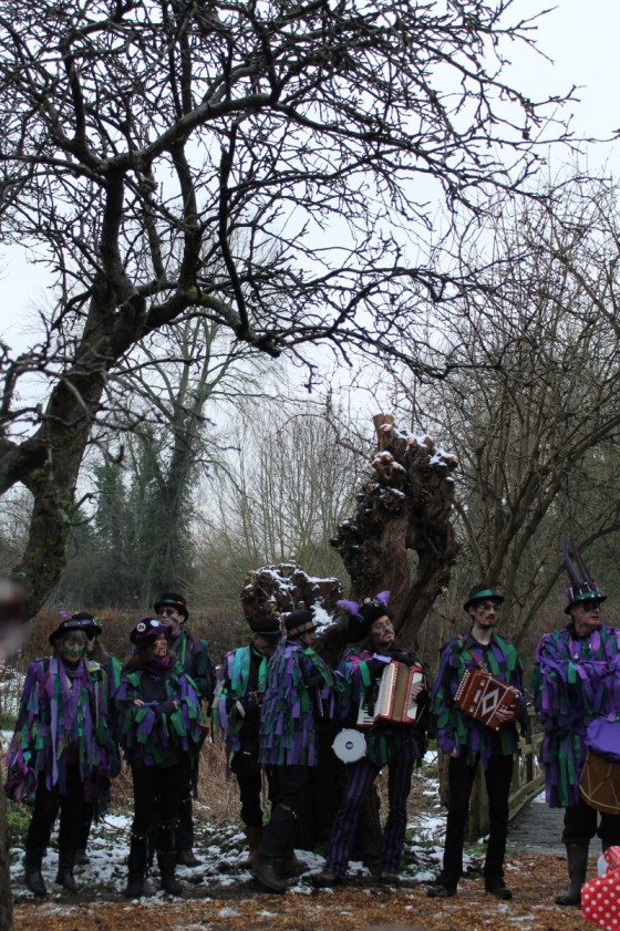 The Wicket Brood Morris Dancers at the local wassail. Copyright Agnes Becker 2016